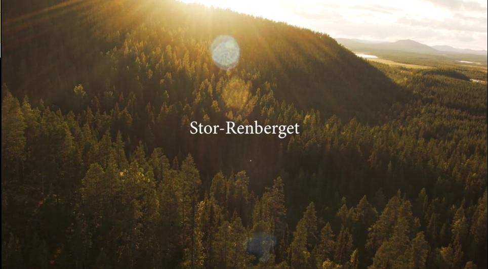 Stor-Renberget